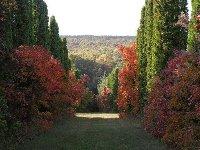 Budakeszi Arborétum